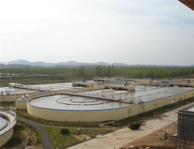 山东烟台淀粉加工厂污水